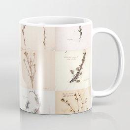 Vintage Herbarium Botanical Collection 1860 Coffee Mug