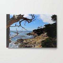 Hello Pacific Ocean - 17 Mile Drive, CA Metal Print