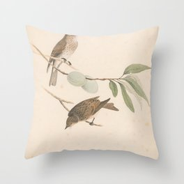 Spotted Flycatcher, muscicapa grisola5 Throw Pillow