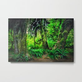 Mossy Giants Metal Print