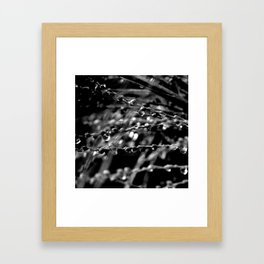 Rain Obstruction Framed Art Print