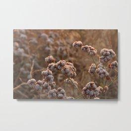 Plants 1 Metal Print