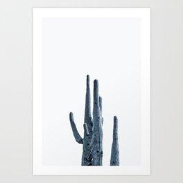 Indigo Desert Cactus Art Print