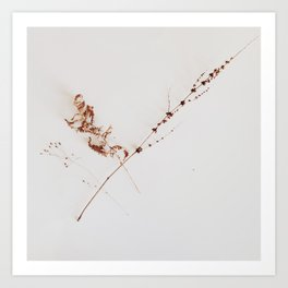 COLLECTABLES Art Print