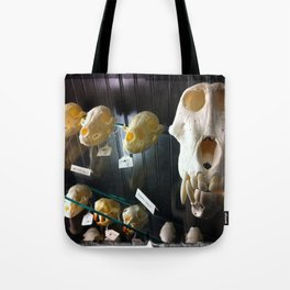 baboon bones Tote Bag