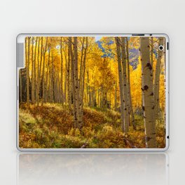 Autumn Aspen Forest Aspen Colorado Laptop & iPad Skin