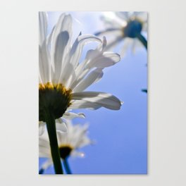 J. VanDam Photography Canvas Print