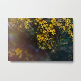 Floral Daze Metal Print