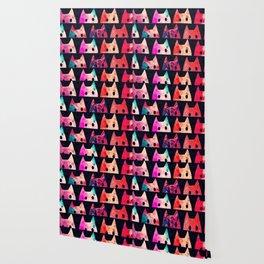 cats 71 Wallpaper