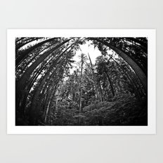 Towering Giants Art Print