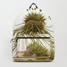 Forgoten throght Backpack