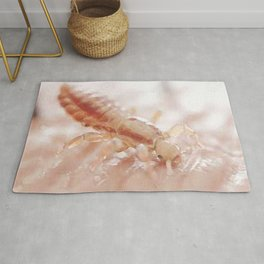painting of louse  Rug