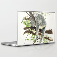 koala Laptop & iPad Skins featuring Koala by Patrizia Donaera ILLUSTRATIONS