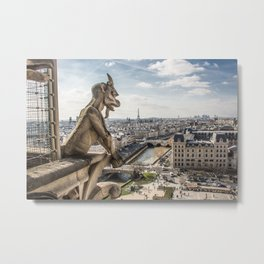 Views from the top Metal Print