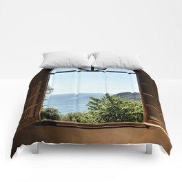 Through the window Comforters