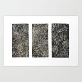 Fungal Studies Art Print