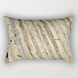 The Ladder on Devils Tower Rectangular Pillow