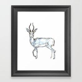 Antelope, watercolor Framed Art Print