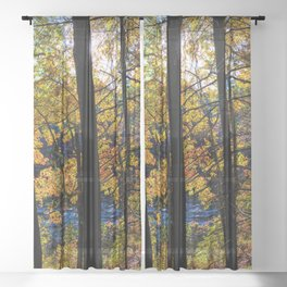 Walden Pond Autumn Forest  in Concord Massachusetts Sheer Curtain