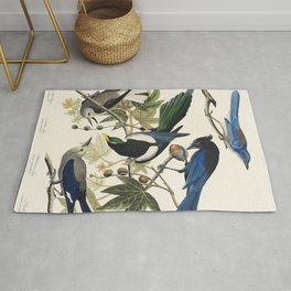 Yellow-Billed Magpie Stellers Jay Ultramarine Jay and Clarks Crow from Birds of America (1827) by Jo Rug