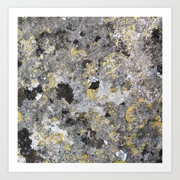 Close up of lichen on ancient stone Art Print