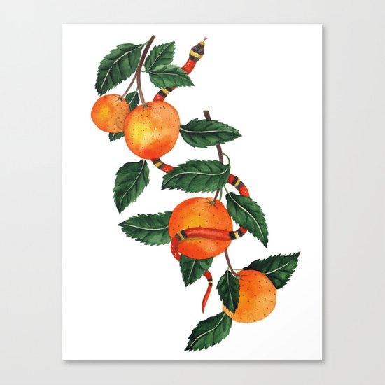 Oranges and a snake Canvas Print