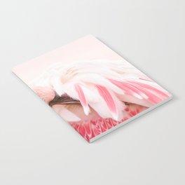 Flamingo pink Notebook