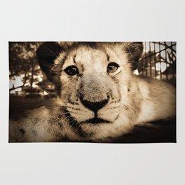 Lion cub Rug