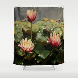Waterlily Pond Shower Curtain