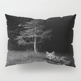 Foxpeek Pillow Sham