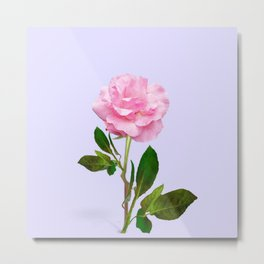 SINGLE PINK ROSE FOR LOVE Metal Print