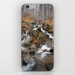 La Scala iPhone Skin