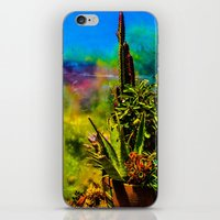 cacti iPhone & iPod Skins featuring Cacti   by Ashley Hirst Photography