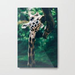 Green Portrait Of A Giraffe Metal Print