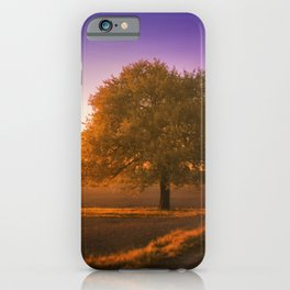 Golden Hour Sunset Landscape iPhone Case