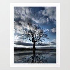 Wintering Oak Tree Art Print
