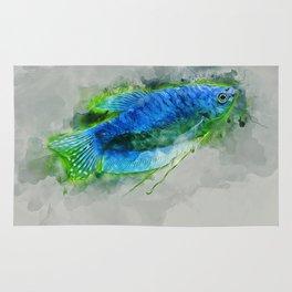 Blue Gourami Rug