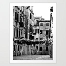 Vines across Venetian street Art Print