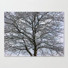 Snowy tree Canvas Print
