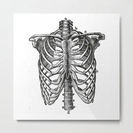 Ribcage Metal Print
