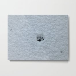 Only one paw out the door Metal Print