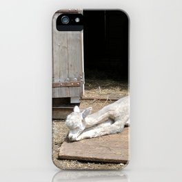 Naptime for Romeo iPhone Case