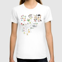 Evolution in biology, scheme evolution of animals on white. children's education back to scool T-Shirt