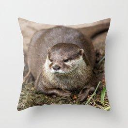 Sunning Otter Throw Pillow