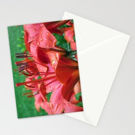 Adieu Red Star Lilies Stationery Cards