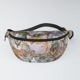 CATS!  Fanny Pack