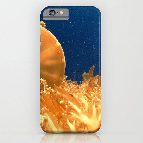 Sea Jellies iPhone & iPod Case