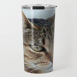Stunning Tabby Cat Close Up Portrait Travel Mug