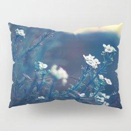 Peaceful Evening Pillow Sham