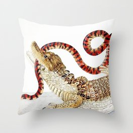 Spectacled Caiman and a False Coral Snake by Maria Sibylla Merian c.1705-10 // Wild Animals Decor Throw Pillow